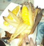 Roasted Corn! Get Some!!