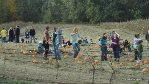 Hippies dancing in the pumpkin fields