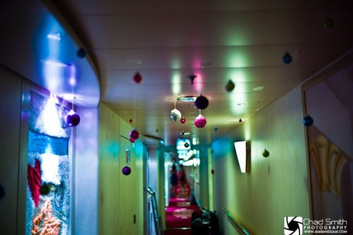 A typical hallway on Jam Cruise (Photo by Chad Smith)